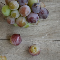 grape burst