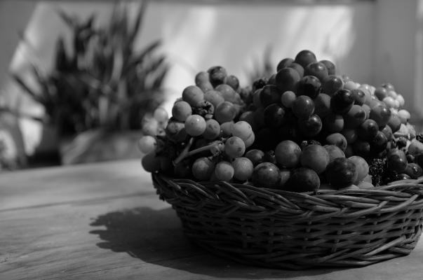 grapes BW