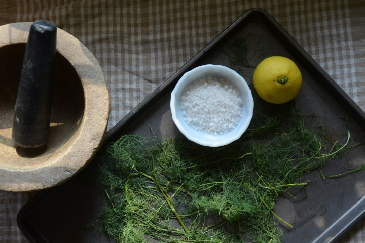 fennel salt 04