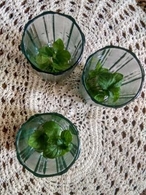 Mint Tea 02